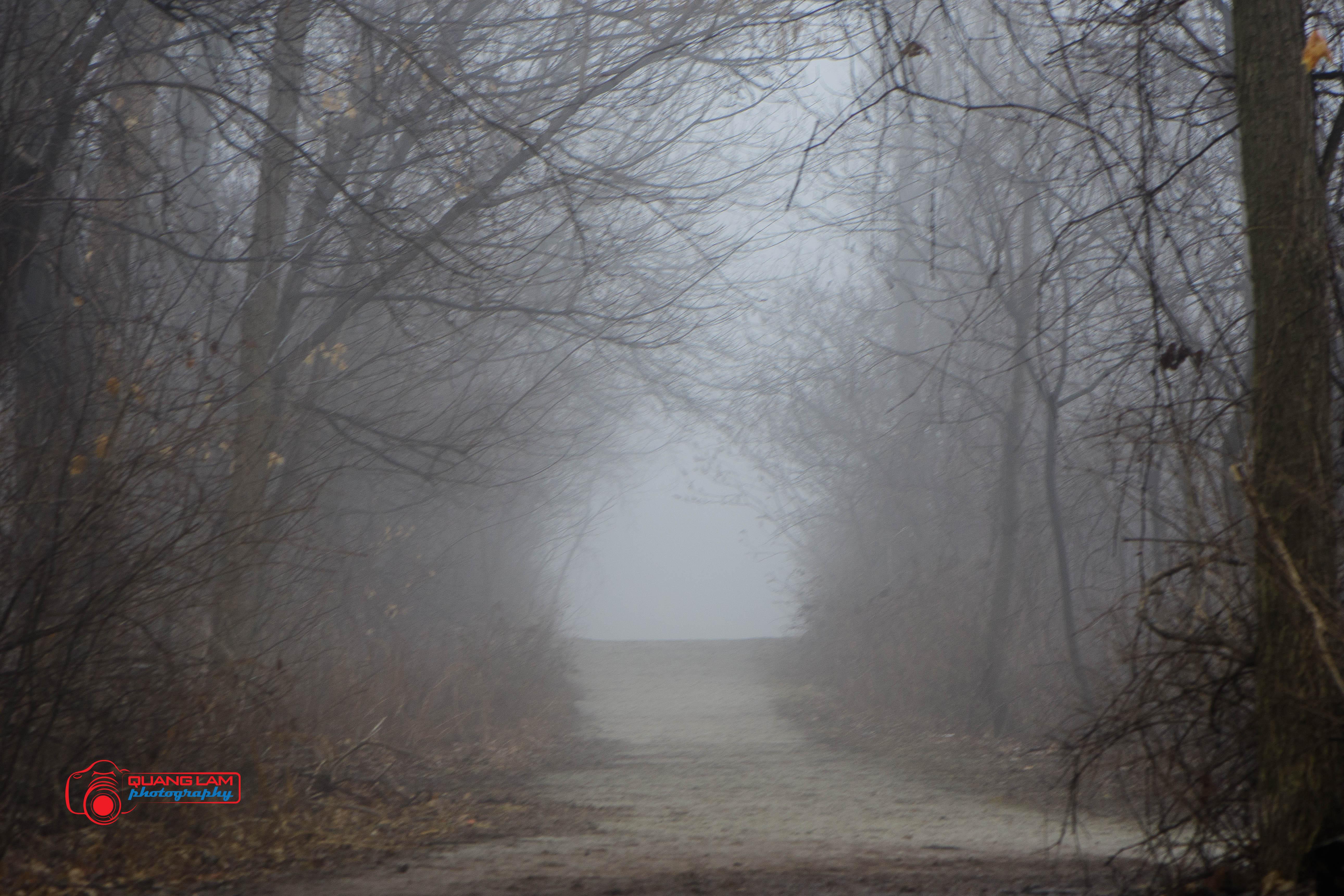 Quang-Lam-Toronto-Condos-foggy-1